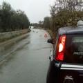 Brutto incidente sulla provinciale Ruvo - Bisceglie