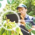 Sempre più giovani alla guida di imprese agricole, «Sostegno per idee green»