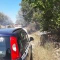 Incendio a Calendano
