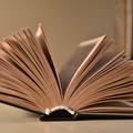 """Anche a Ruvo di Puglia si celebra la  """"Festa della lettura e dei lettori """""""