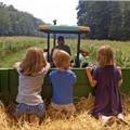 Agriturismo e masserie didattiche, il vademecum per ripartire in sicurezza