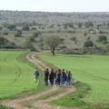 Escursioni nel Parco dell'Alta Murgia, da oggi prenotabili con le Guide Ufficiali