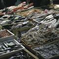 Niente pesce fresco in tavola sino all'8 settembre