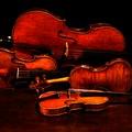 """Domani il Concerto dell'Epifania con il quartetto d'archi """"Amici della Musica"""""""