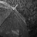Allerta gialla in Puglia, pioggia anche su Ruvo di Puglia