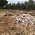 I volontari ripuliscono la via Traiana dai rifiuti