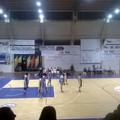 Altra sconfitta casalinga per la Tecnoswitch Ruvo Basket