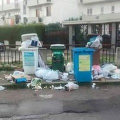 Un puzzle di rifiuti a Ruvo, cosa sta succedendo?