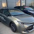 Easy Driver Suzuki-Toyota a Molfetta: 20 anni di esperienza nel settore automotive