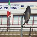 Il Liceo Tedone apre le sue porte