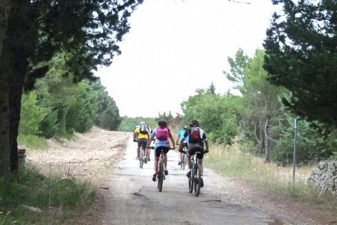 escursione bicicletta