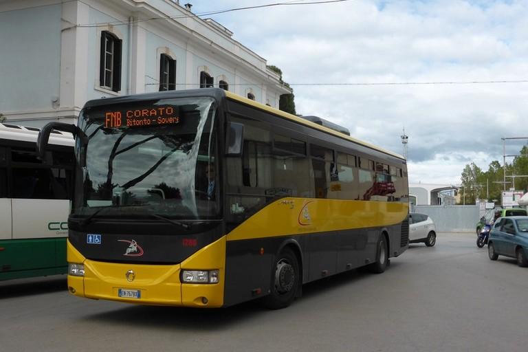 Ferrotramviaria - Autobus