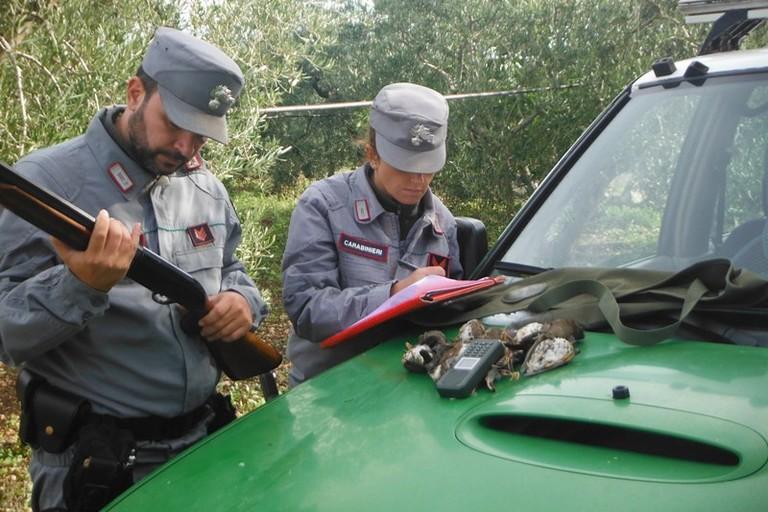 Carabinieri della Forestale di Ruvo in azione