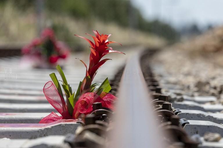 Il fotoracconto a due anni del disastro ferroviario tra Andria e Corato. <span>Foto Vincenzo Bisceglie</span>