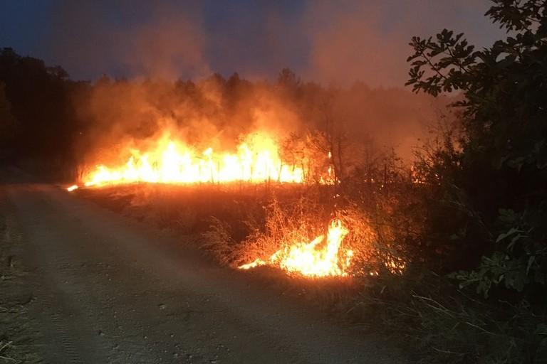 Incendio parco dell'alta murgia
