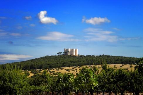 Castello del monte - Murgia