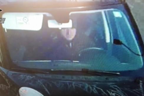 Carabinieri, il video dell'arresto del latitante