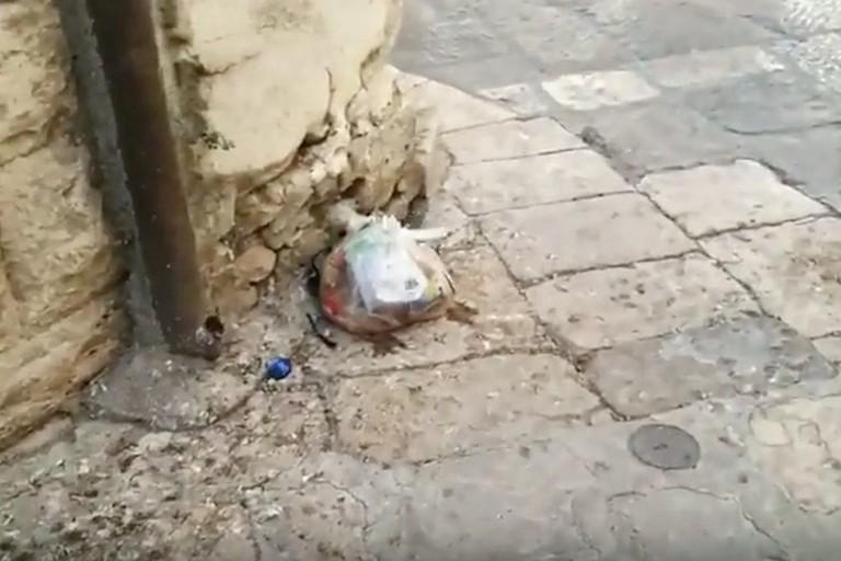 Degrado nel centro storico, Rifondazione mostra un video